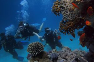 dykning_udstyr_