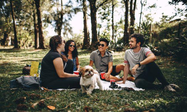 3 sjove ting du skal have med på vennetur i sommerhuset