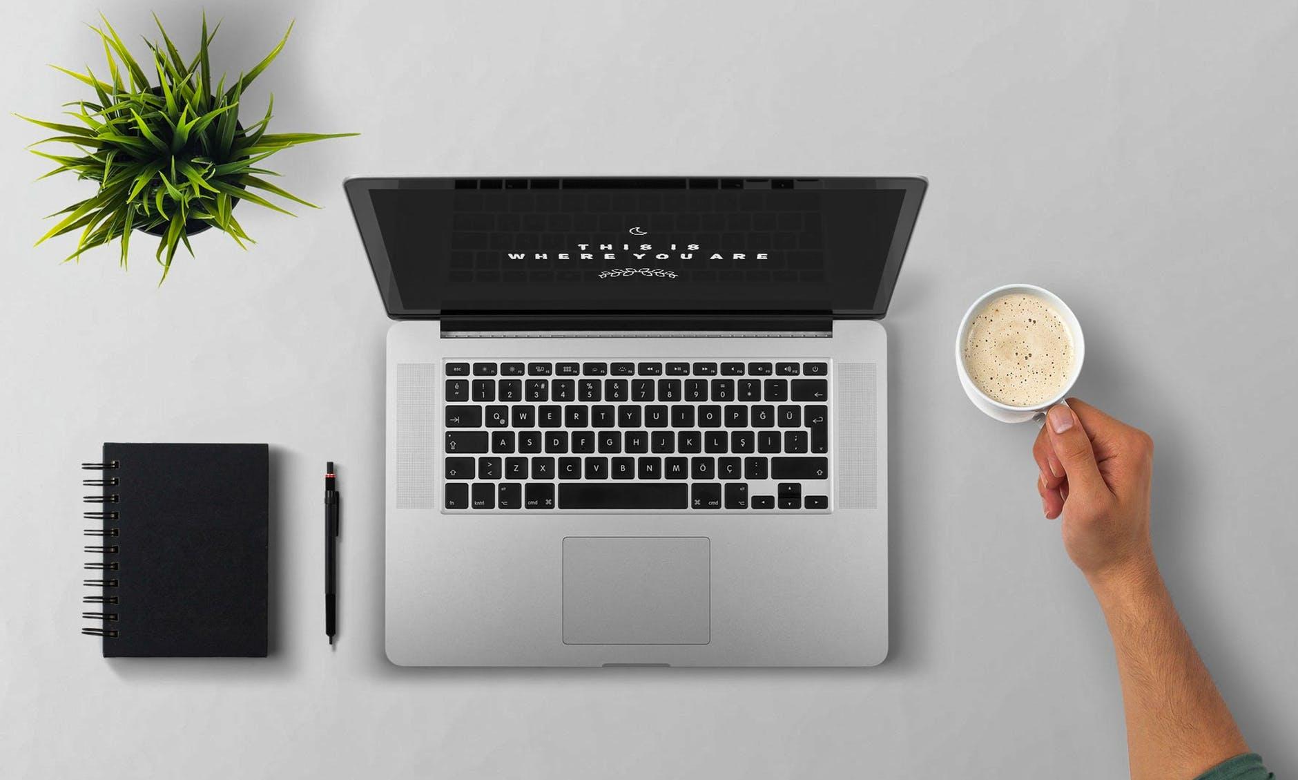 Computer og nettet